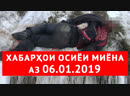 Хабарҳои Тоҷикистон ва Осиёи Марказӣ 06.01.2019 (اخبار تاجیکستان) (HD)