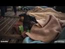 Marokkanische Marine schießt auf Flüchtlingsboot Eine Tote drei Verletzte