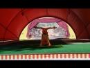 львята.цирковая студия арлекино kids