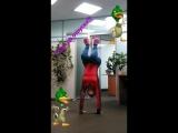 crazy duck