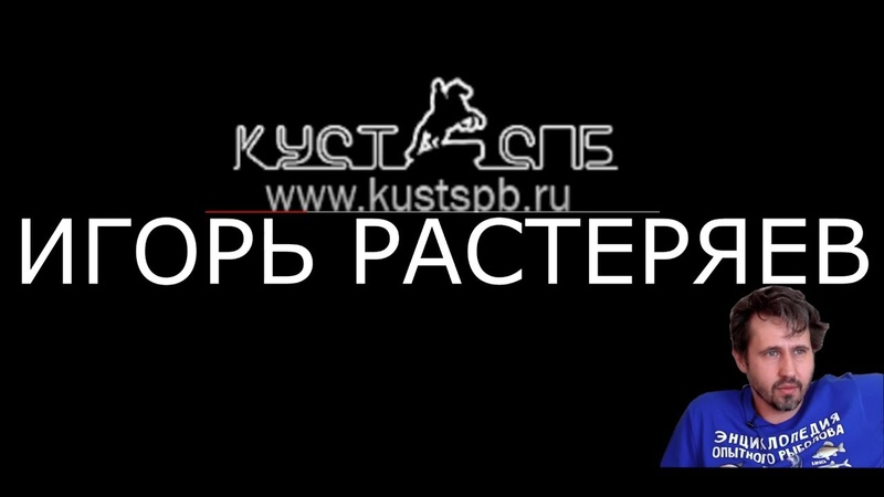 Игорь Растеряев о творческом успехе | Культурная стена