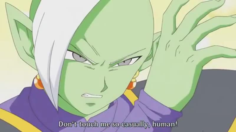 Goku Meets Zamasu English Sub