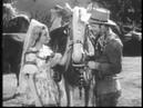 La Llorona Mexican folklore song Irene Mardi