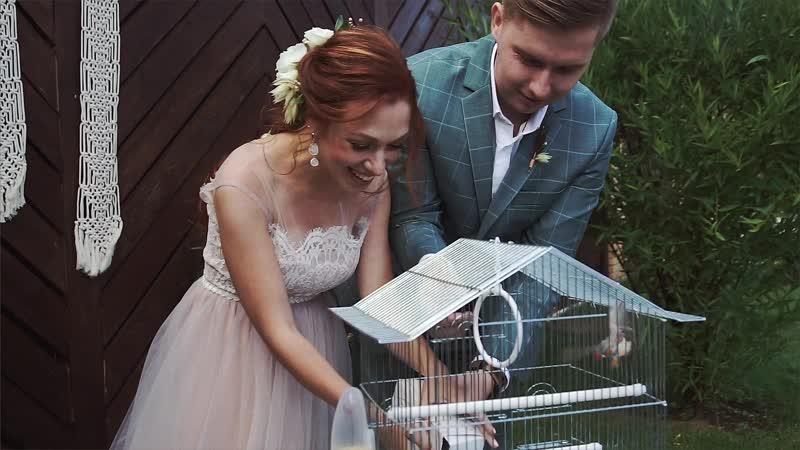 Свадьба Алёна и Миша 06.07.18 таежныекактусы
