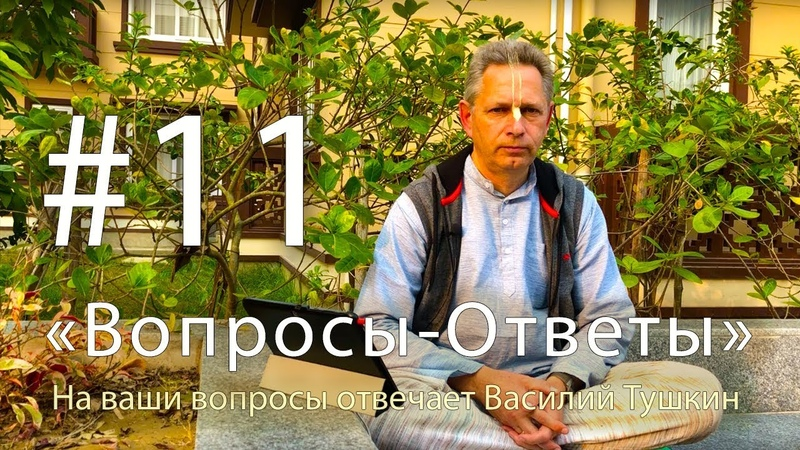Вопросы Ответы Выпуск 11 Василий Тушкин отвечает на ваши вопросы