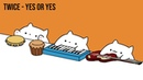 Bongo Cat - TWICE YES or YES (K-POP)