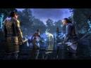 Elder Scrolls Online TAMRIEL GO