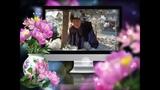 Богема любви - Автор Светлана Полыгалова исполнитель Николай Морозов ( nikshanson )