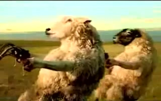 Реклама ментос с овцами