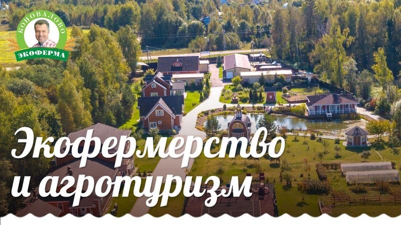 Александр Коновалов о том, почему он решил заниматься экофермерством и агротуризмом 6