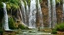 Звуки водопада.Пение птиц. Джунгли. HD