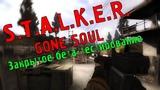 S.T.A.L.K.E.R. GONE SOUL - Закрытое Бета-Тестирование (Первая версия мода)