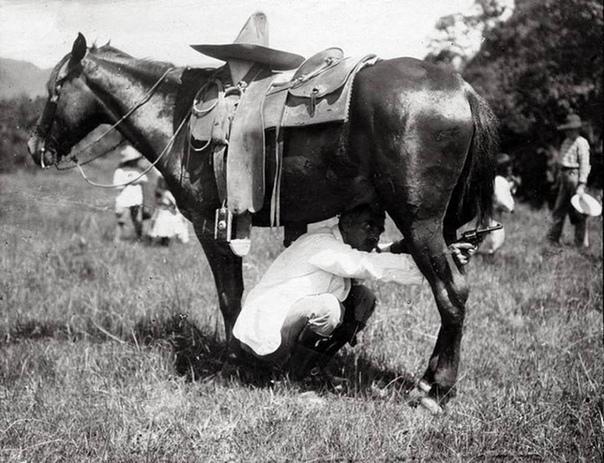 Обманутый противник стреляет по сомбреро на спине лошади Всадник же атакует врага из-под неё (Мексика, 1913
