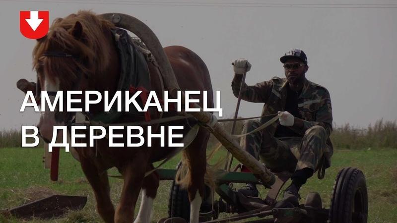 Американец в деревне: косит траву, кормит лошадь и впервые копает картошку