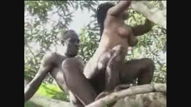 Порно фильм африканские в джунгли