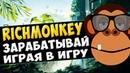 Новая игра с выводом реальных денег richmonkey. Как заработать деньги играя в игру