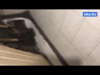 В Перми рабочий провалился с крыши в жилую квартиру