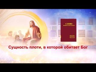 Церковь Всемогущего Бога   Евангелие дня «Сущность плоти, в которой обитает Бог»