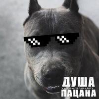 Vitya Dyrandin