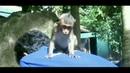 New video of baby monkey Lori 😊 🙂