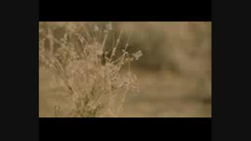Кайрат Нуртас - Шыда жүрек (OST к_ф _Өкініш_) - 144P.mp4
