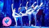 Народный цирк