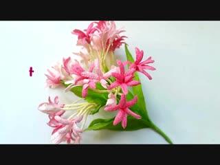 DIY craft tutorial How to make Combretum Indicum by crepe paper Làm hoa trang leo giấy nhún