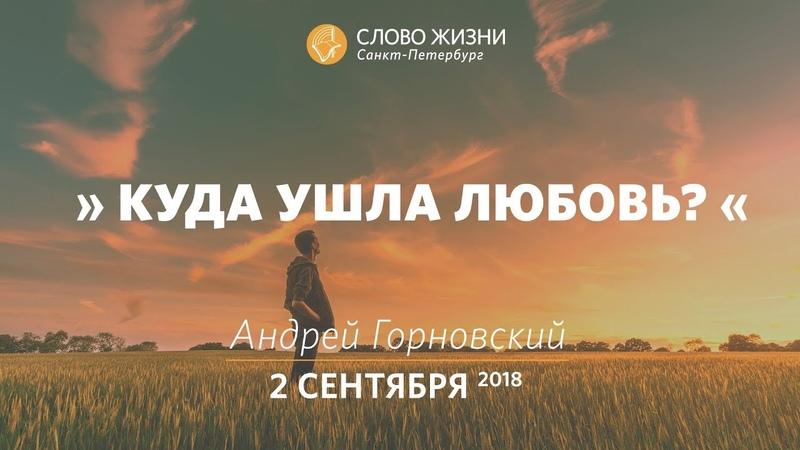 Куда ушла любовь - Андрей Горновский, Слово Жизни, г. Санкт-Петербург