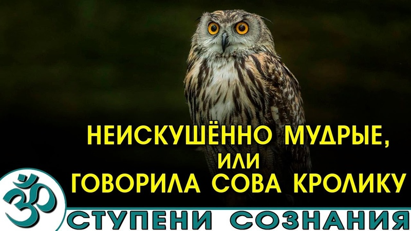 Вэй У Вэй Неискушённо мудрые или говорила Сова Кролику Аудиокнига NikОsho