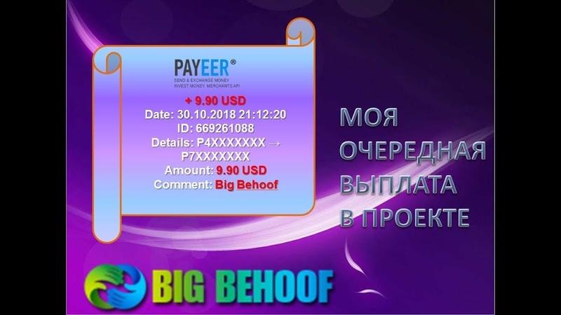Мои первые выплаты в проекте Big Behoof