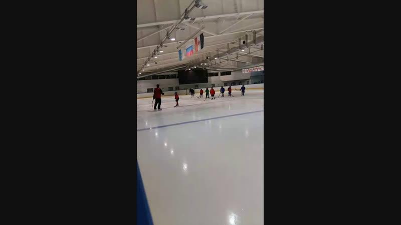 Live: Хоккейный Клуб ГВОЗДИКА