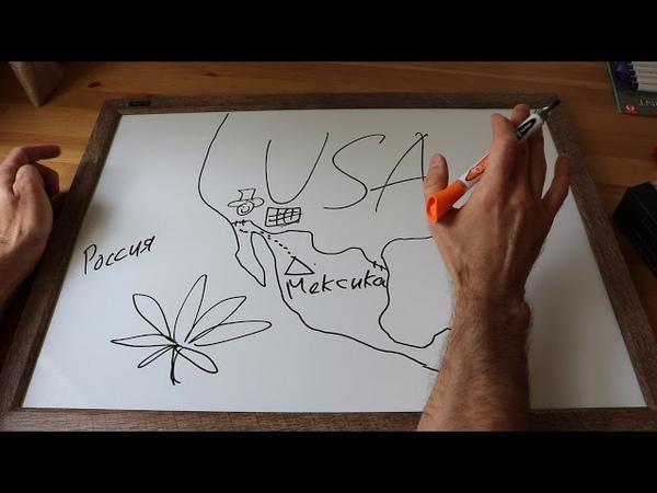 Как переехать в Америку без визы. Политическое убежище