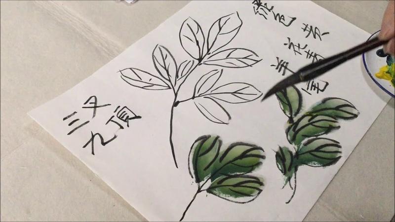 中国写意花鸟画讲堂 - 如何画牡丹花叶(第四讲)