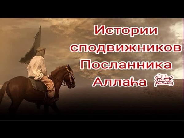 Истории сподвижников Пророка Мухаммада ﷺ. Тальха ибн 'Убайдуллаh(да будет доволен им Аллаh)