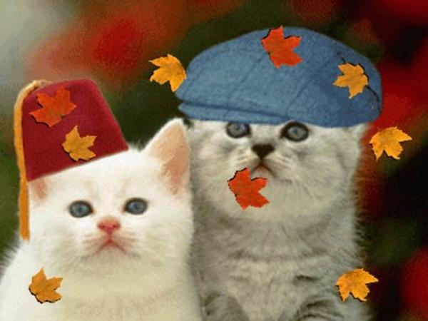 Осень в лесу (минус) автор сл. и муз. неизвестен
