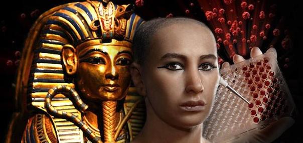 Половина европейских мужчин имеют ДНК царя Тутанхамона (гаплогруппа R1b1a2 в отличие от менее чем 1% современных египтян. Предполагается, что общий предок жил на Кавказе около 9500 лет