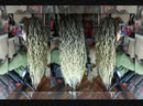 Д.Е.Косы Wave Ombre/Brown Blond/Майя Бродская