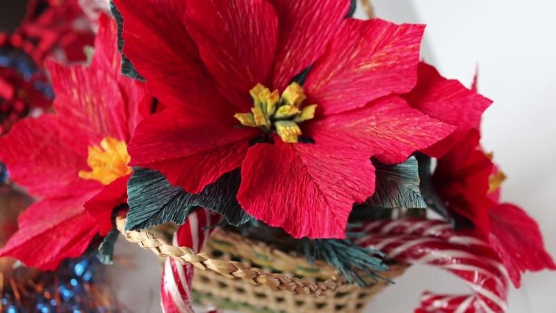 Paper Poinsettia Flower DIY / Tutorial / Пуансеттия из бумаги / Цветок Рождественская звезда