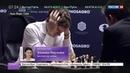Новости на Россия 24 • Шахматы. Карякин и Карлсен снова сыграли вничью