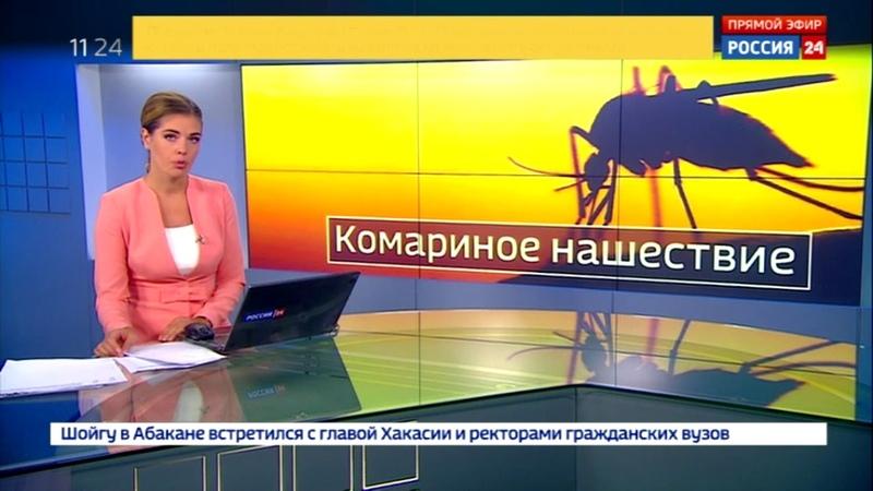 Таганрогские комары на канале Росссия