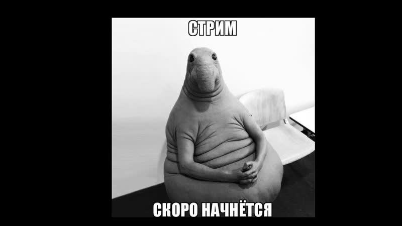 Евгений Зимин live via