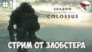 Shadow of colossus (PS4) - В тени колосса Стрим!