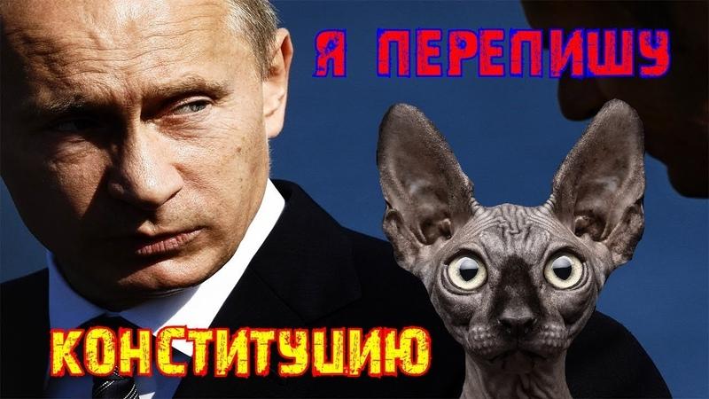 Путин взял за жабры Конституцию России Кот Костян