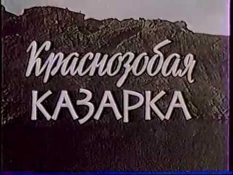 Краснозобая Казарка