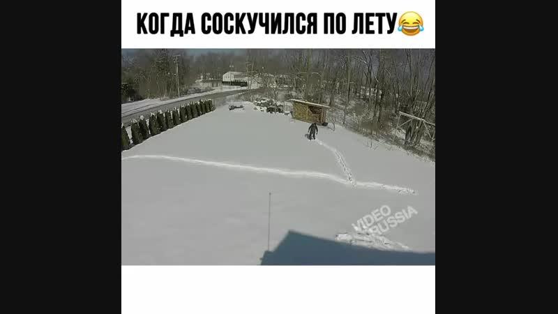 Лето, я соскучился)