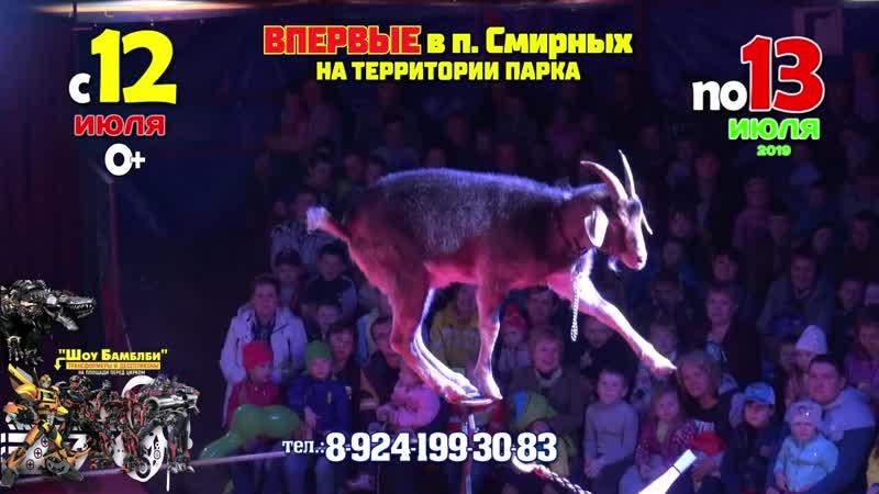 Цирк Крокус в п.Смирных