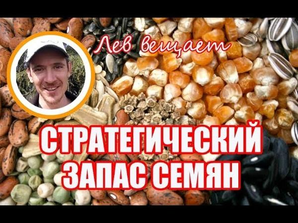 СВОЙ БАНК СЕМЯН. СТРАТЕГИЧЕСКИЙ ЗАПАС. ПРО F1 И ГМО