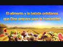 Dios te habla Dios mismo el único VIII Dios es la fuente de vida para todas las cosas II parte 4