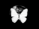 chaos theory the butterfly effect