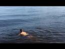 Расслабляюсь на волнах от катеров и яхт